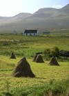 Crofts and haystacks, Isle of Skye, Scotland
