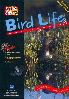 Bird Life magazine cover